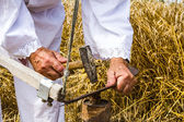 Sharpening a scythe — Stockfoto