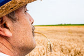 Portrait of a senior farmer — Stock Photo