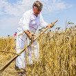 Stock Photo: Farmer cutting wheat