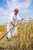 Farmer cutting wheat — Stock Photo