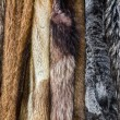 Fur coats — Stock Photo #37678425