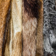 Fur coats — Stock Photo #37678587