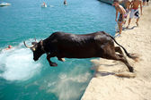 Traditional bull party in Javea, Spain — Stock Photo
