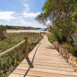 Beach way to Saona beach in Formentera Balearic islands — Stock Photo
