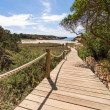 Beach way to Saona beach in Formentera Balearic islands - Stock Photo