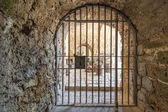 Antique iron gate — Stock Photo