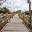 Beach way to Salinas beach in Ibiza Balearic islands — Foto de Stock