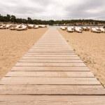 Beach way to Bassa beach in Ibiza Balearic islands — Stock Photo