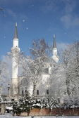 Mosque in winter — Stock Photo