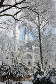 Die moschee im schnee — Stockfoto
