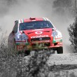 Stock Photo: World rally car