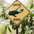 Sign gator — Stock Photo