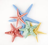 Starfish isolated object — Stock Photo