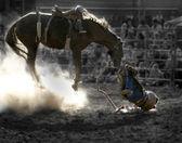 Tossed cowboy — Stock Photo