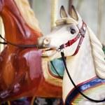 Carnival horses — Stock Photo #15760443