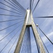 Anzac bridge - Stock Photo