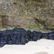 Coal seam - Foto de Stock