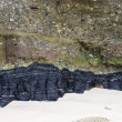 Coal seam — Stock Photo