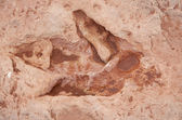 Dinosaur tracks usa — Stock Photo