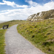 Samphire Hoe — Stock Photo #32730891