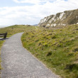 Samphire Hoe — Stock Photo