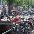 Flowers in Amsterdam — Stock Photo