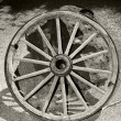 Wagon wheel — Stockfoto #36603137