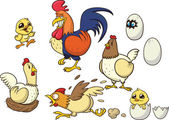Cartoon chicken — Vetor de Stock