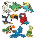 Cartoon tropical birds — Stock Vector