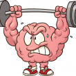 Stock Vector: Weightlifting brain