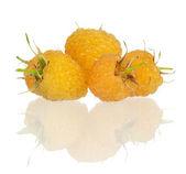 Framboises jaunes — Photo