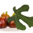 Fresh figs - Stock fotografie
