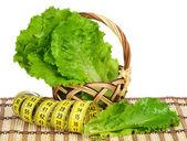 Fresh lettuce — Stock Photo