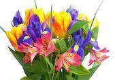 Bright bouquet — Stock Photo