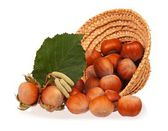 Ripe hazelnuts — Stock Photo
