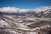 Nepal 7765 Himalaya mustang — Foto de Stock