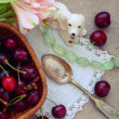 Stock Photo: Summer Still Life with berries cherries a silver spoon and a white porcelain dog