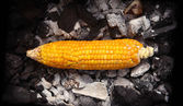 Yellow corn grilled on coals - Indian Street Food — Stock Photo