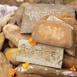 Stones with mantras in Himalayas — Stock Photo #30172511