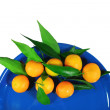 Stock Photo: Mandarins on dark blue plate - isolated object white background