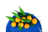 Mandarins on a dark blue plate - isolated object white background — Stock Photo