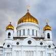 Royalty-Free Stock Photo: Christ the Saviour Cathedral