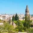 Stock Photo: Cordoba, Spain