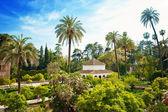 Sevilla, hiszpania — Zdjęcie stockowe