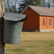 Stock Photo: Maple tree with sap bucket