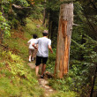 Boys running in trail — Stock Photo