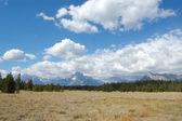Grand Tetons prairie landscape — Stock Photo