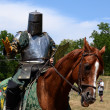Jouster requesting his sword - Stock Photo