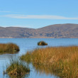 Stock Photo: Lake Titicacreed landscape