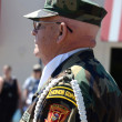 Vietnam veteran at the Ypsilanti, MI 4th of July parade — Stock Photo
